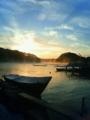 [牡蠣][風景][気仙沼][三陸][リアス][森][海][森は海の恋人][牡蠣][夜明け]冬、夜明け(舞根湾)