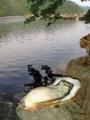 [牡蠣][風景][気仙沼][三陸][リアス][森][海][森は海の恋人][牡蠣]牡蠣と舞根湾