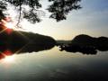[風景][リアス][三陸][牡蠣][森][海][夜明け]夜明け(舞根湾)