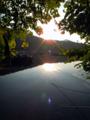 [風景][リアス][三陸][牡蠣][森][海][夜明け][朝日]朝日に輝く舞根湾