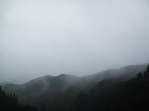 秋雨に煙る(舞根)