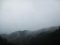 [風景][リアス][三陸][森][海][雨][秋]秋雨に煙る(舞根)