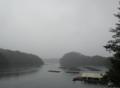 [風景][リアス][三陸][森][海][雨][秋]秋雨に煙る(舞根湾)