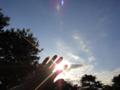 [風景][リアス][三陸][空][秋]朝の光(舞根)