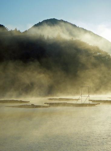 煙る御早馬(秋の朝、海霧の舞根湾、早馬山)