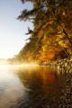 [風景][リアス][三陸][秋][空]海霧と紅葉(舞根湾)