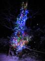 [風景][気仙沼][三陸][リアス][森][海][クリスマス]ツリーに降る雪