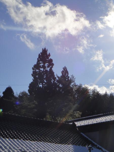 雪解けの空(舞根湾)