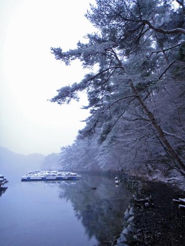汽水の路、雪(舞根湾)
