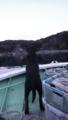 [風景][気仙沼][三陸][リアス][夕日]早く帰ろう(舞根、貝浜)