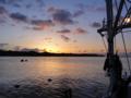 [風景][気仙沼][三陸][リアス][森][海]唐桑半島に昇る朝日(大島瀬戸)