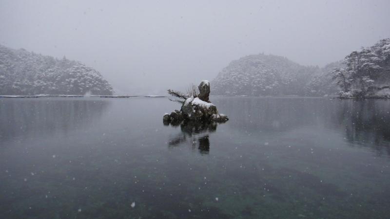 雪 -snowing- (舞根湾/Moune-bay,Kesen-numa)