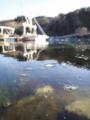 [風景][気仙沼][三陸][リアス][森][海][春]春の薄氷(舞根湾)