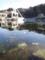 春の薄氷(舞根湾)