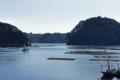 [風景][気仙沼][三陸][リアス][森][海][春]浦まつり(舞根湾)