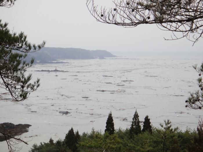 f:id:mizuyama-oyster-farm:20110412161722j:image:w500