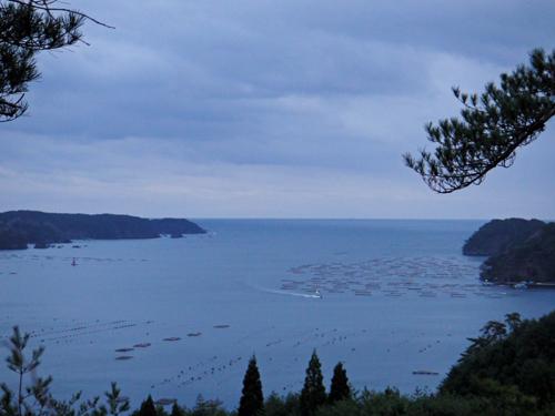 f:id:mizuyama-oyster-farm:20110412161725j:image:w500