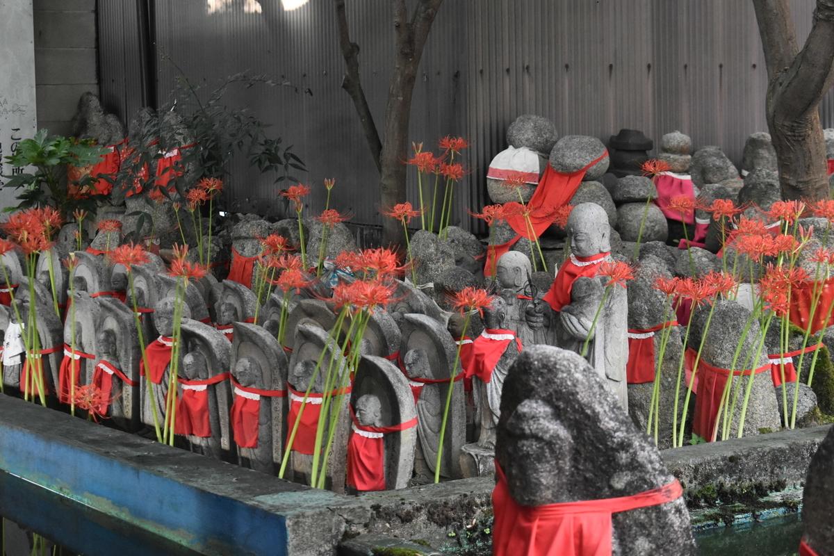 千本ゑんま堂の彼岸花