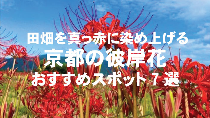 京都 おすすめ スポット