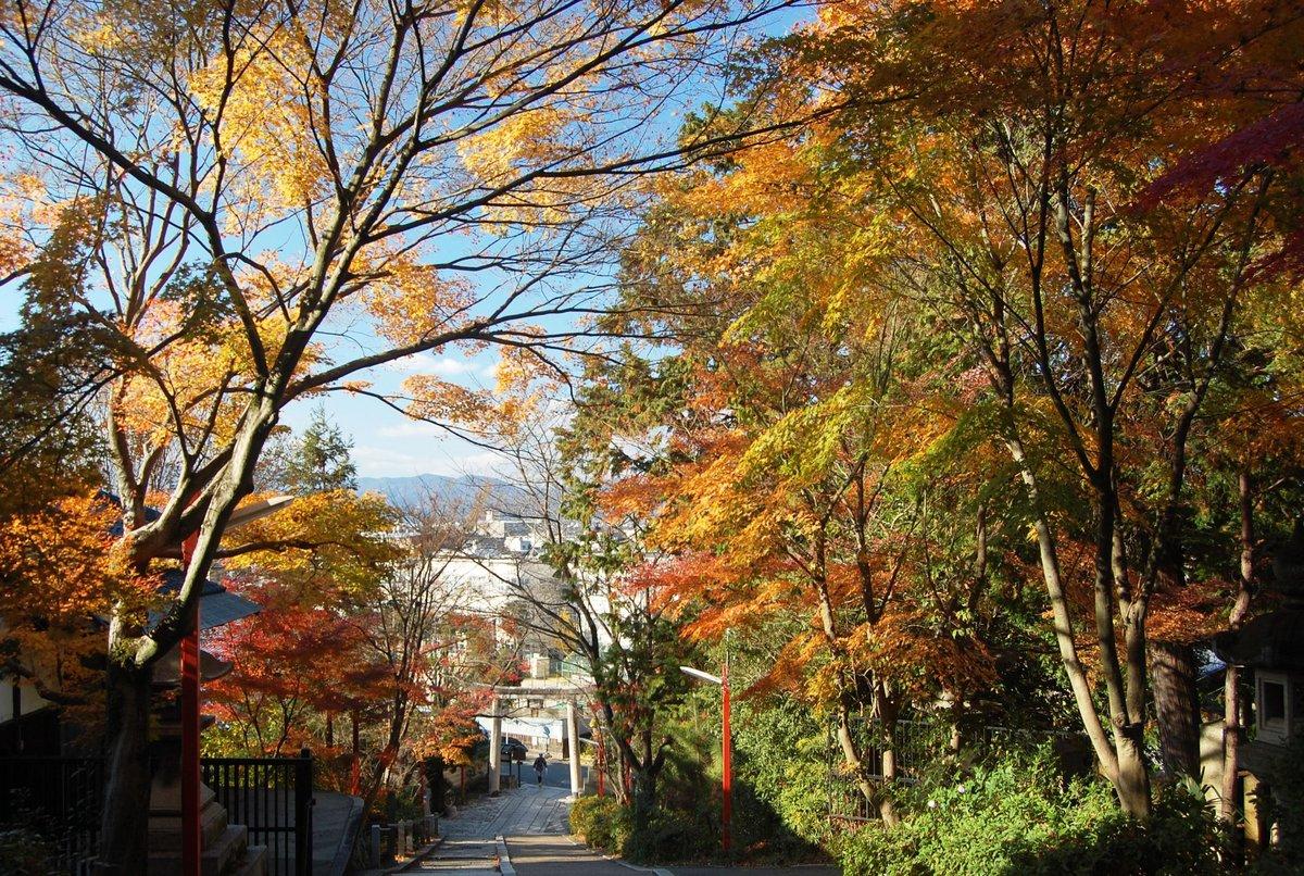 粟田神社の紅葉