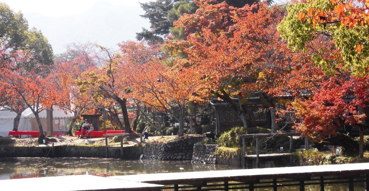 大沢池の桜紅葉