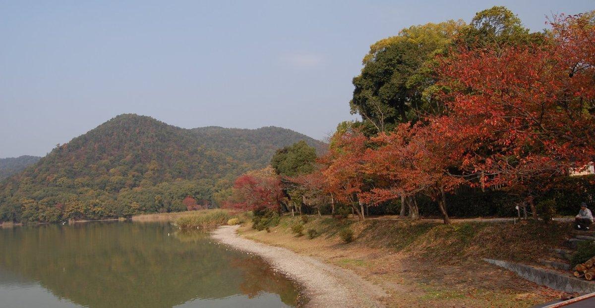 広沢池の桜紅葉