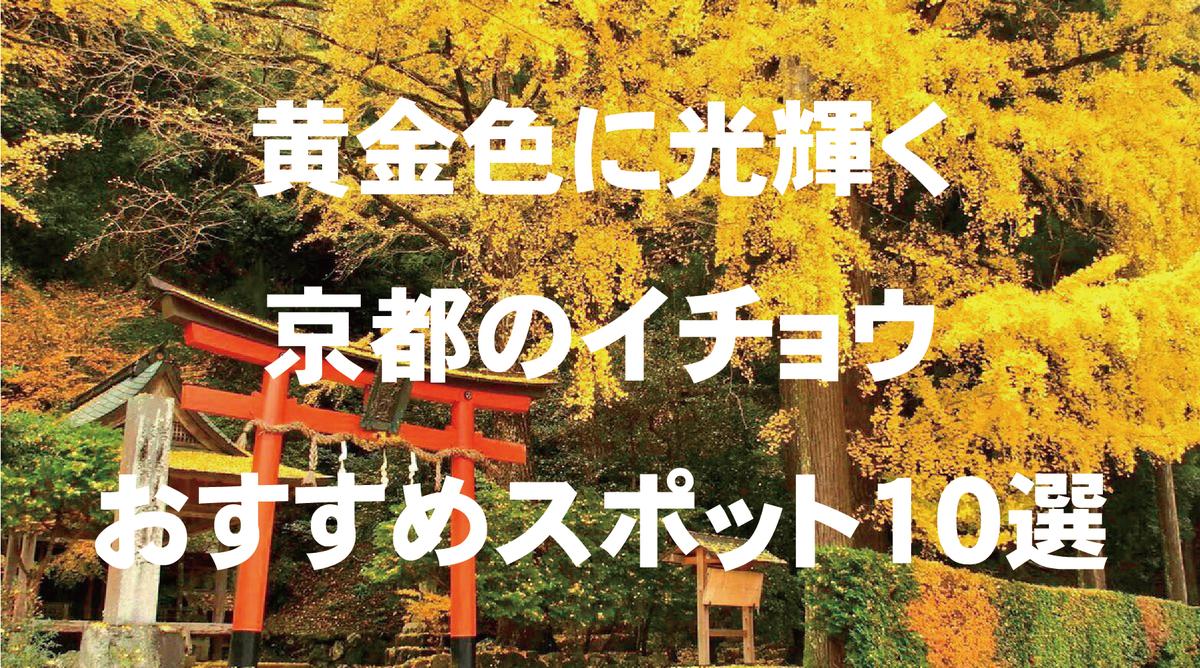黄金色に光輝く京都のイチョウおすすめ黄葉スポット10選