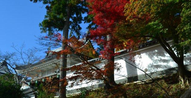 園部城跡の紅葉