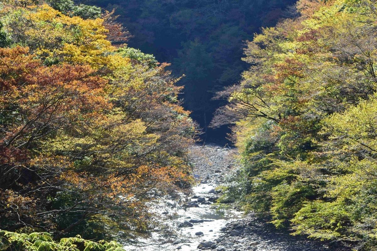 唐戸渓谷の紅葉