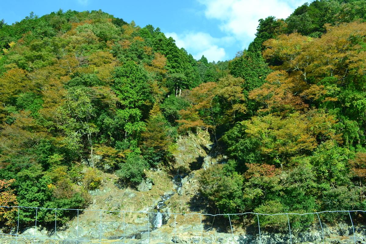 蓮如の滝の紅葉