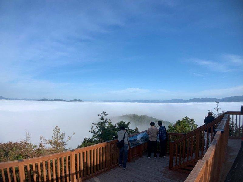 かめおか霧のテラスの雲海