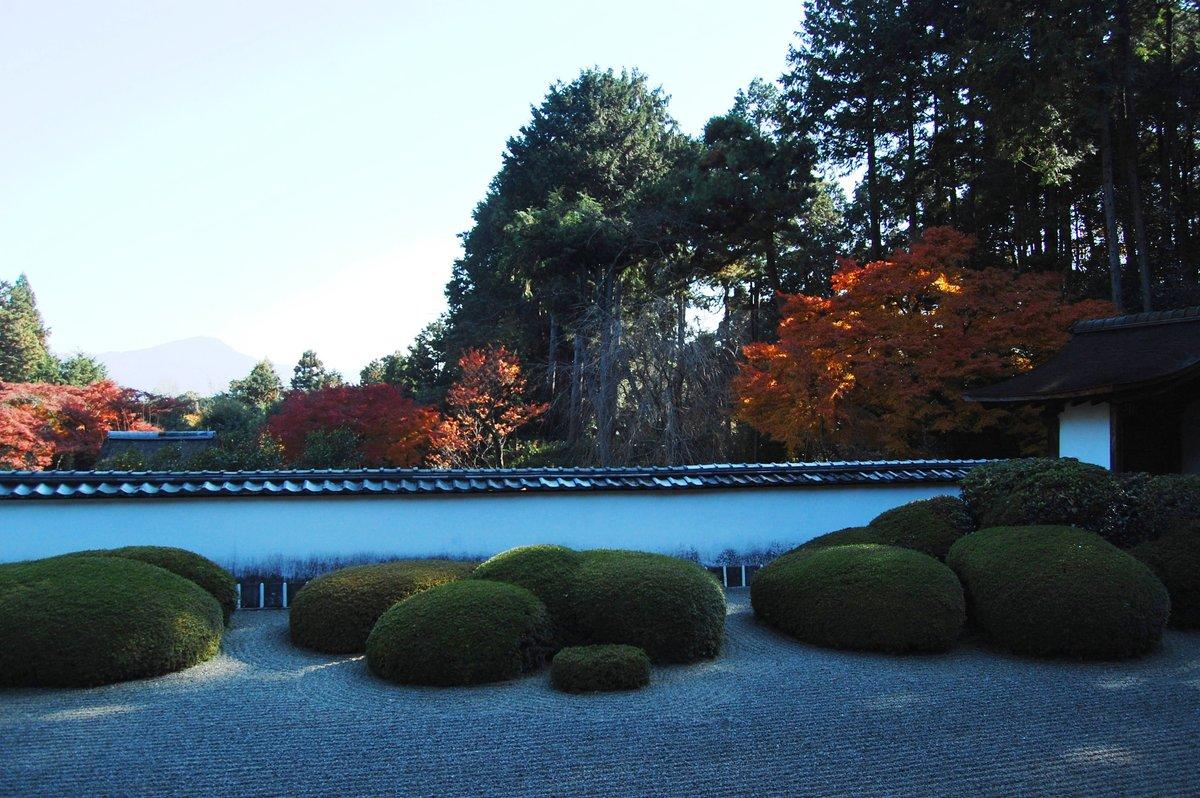 正伝寺の紅葉2007