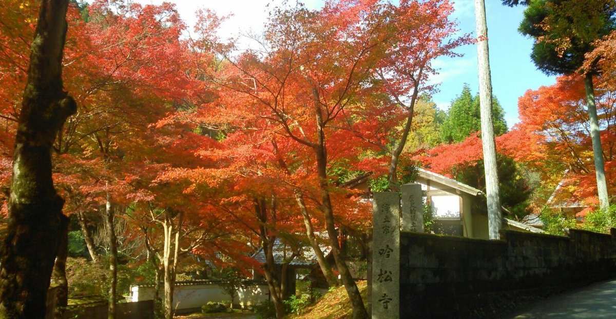 吟松寺の紅葉2014
