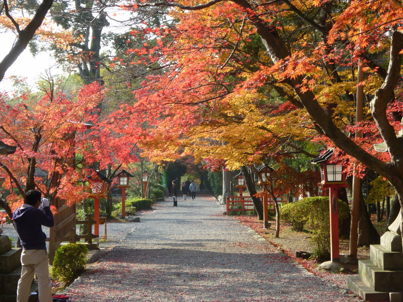 大原野神社の紅葉2010