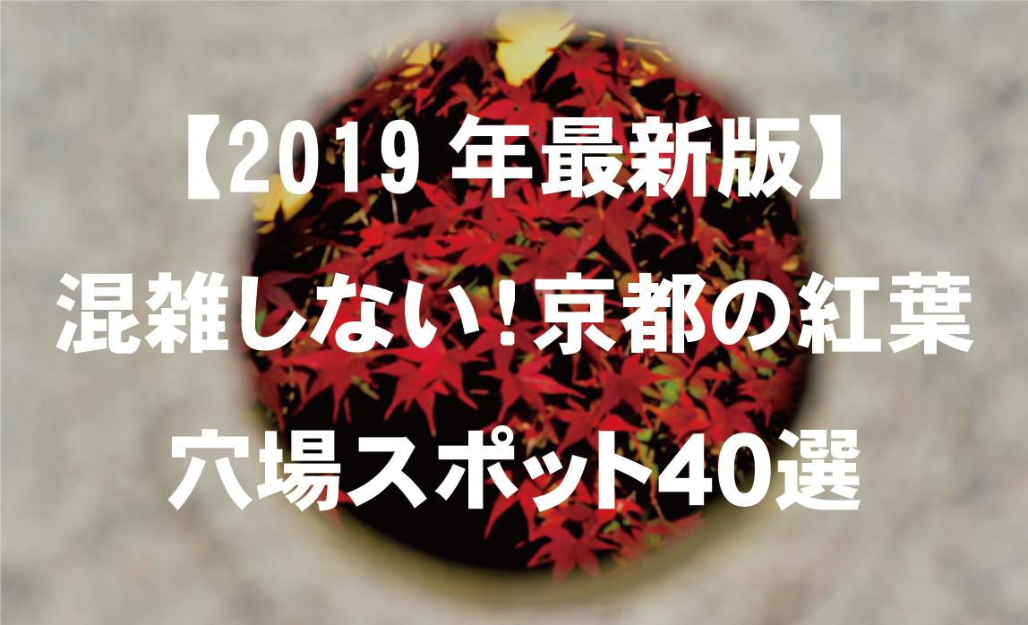 f:id:mk_taxi:20191122201140j:plain