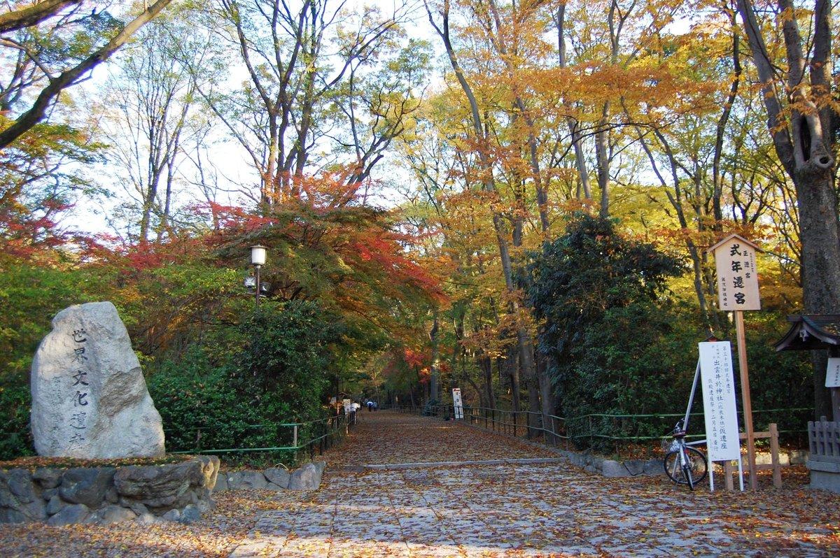 糺の森の紅葉2007