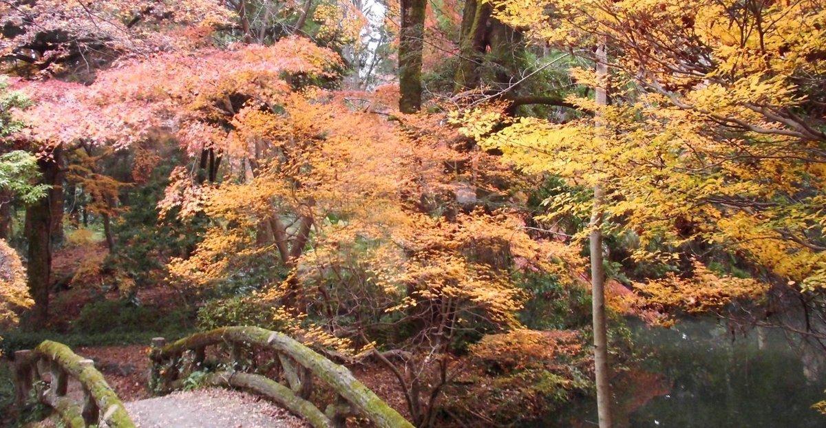 京都府立植物園の紅葉2016