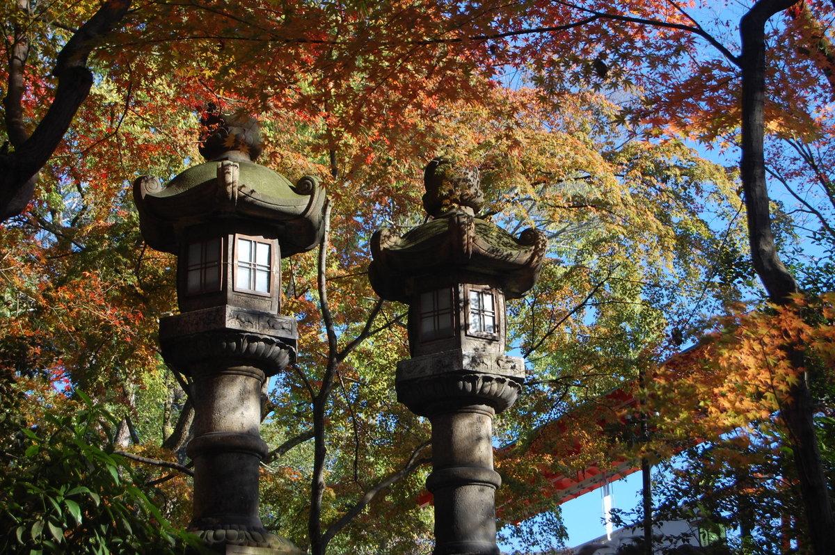 八坂神社の紅葉2008