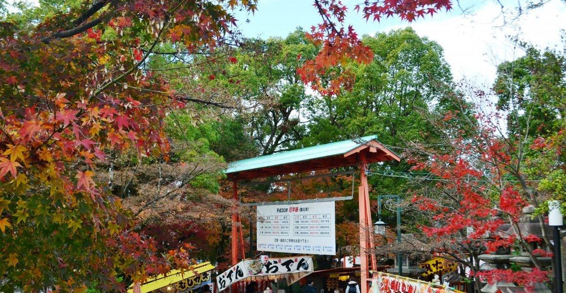 八坂神社の紅葉2018