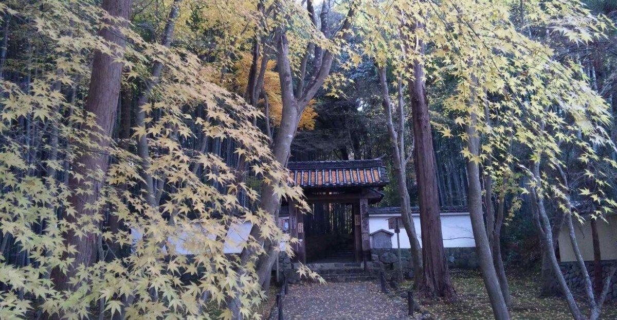地蔵院の紅葉2012