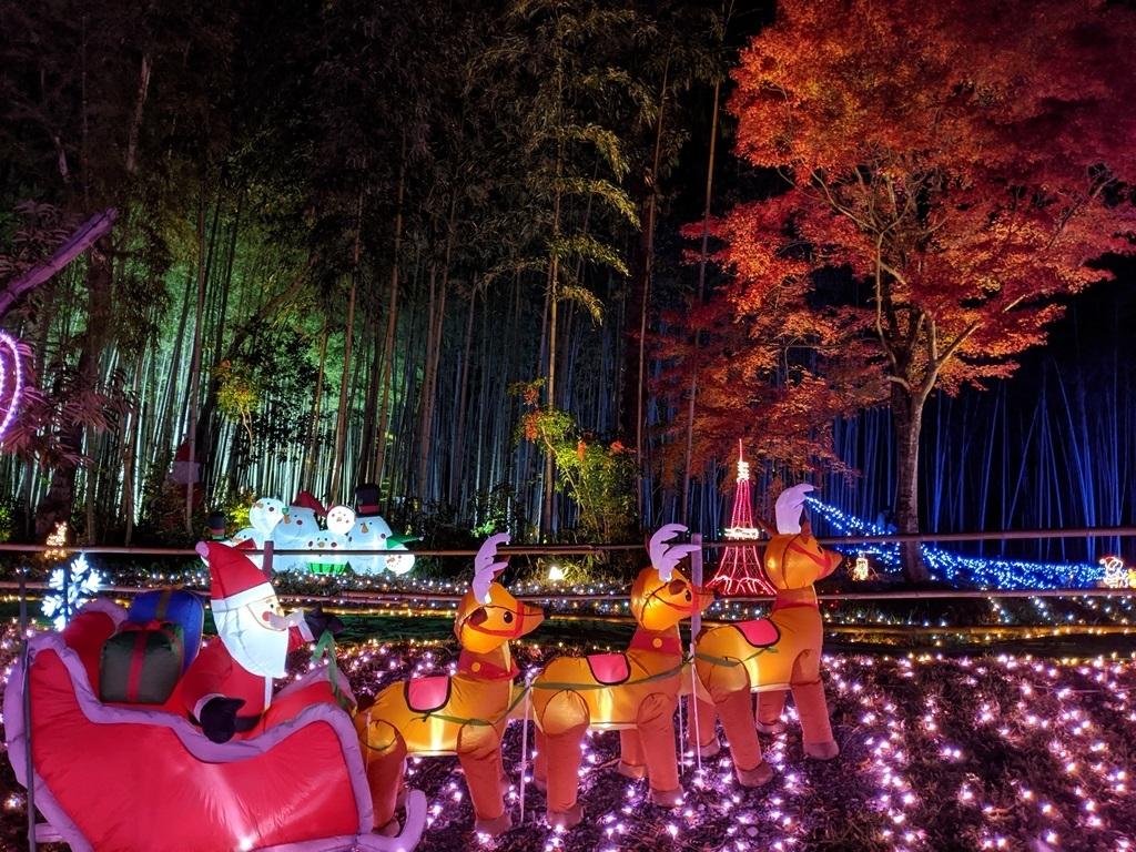 サンタと紅葉の競演