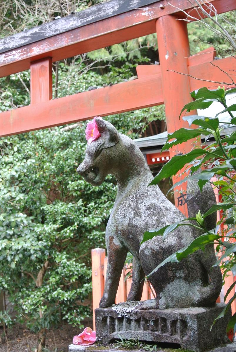 大豊神社の狛狐