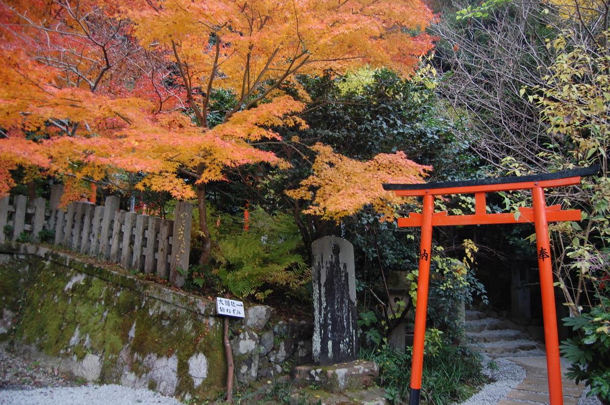大豊神社の紅葉