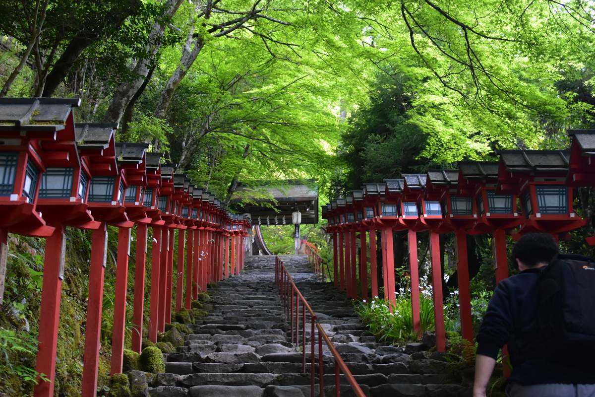 貴船神社の新緑 2019年5月12日 撮影:MKタクシー