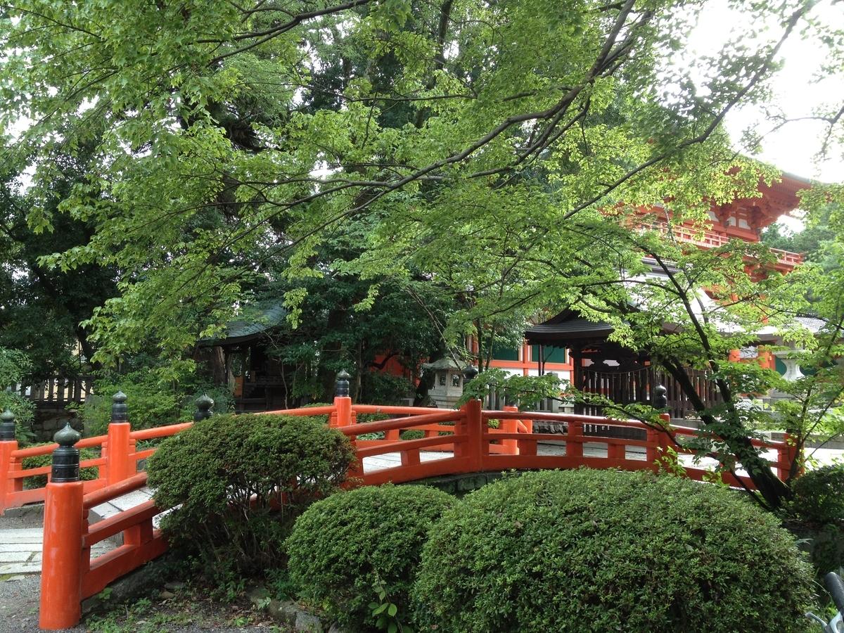 今宮神社の青もみじ 2014年8月27日 撮影:MKタクシー