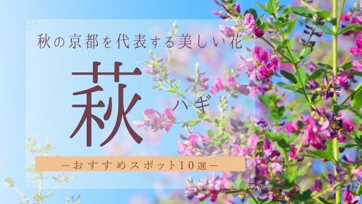 秋の京都を代表するハギおすすめスポット10選