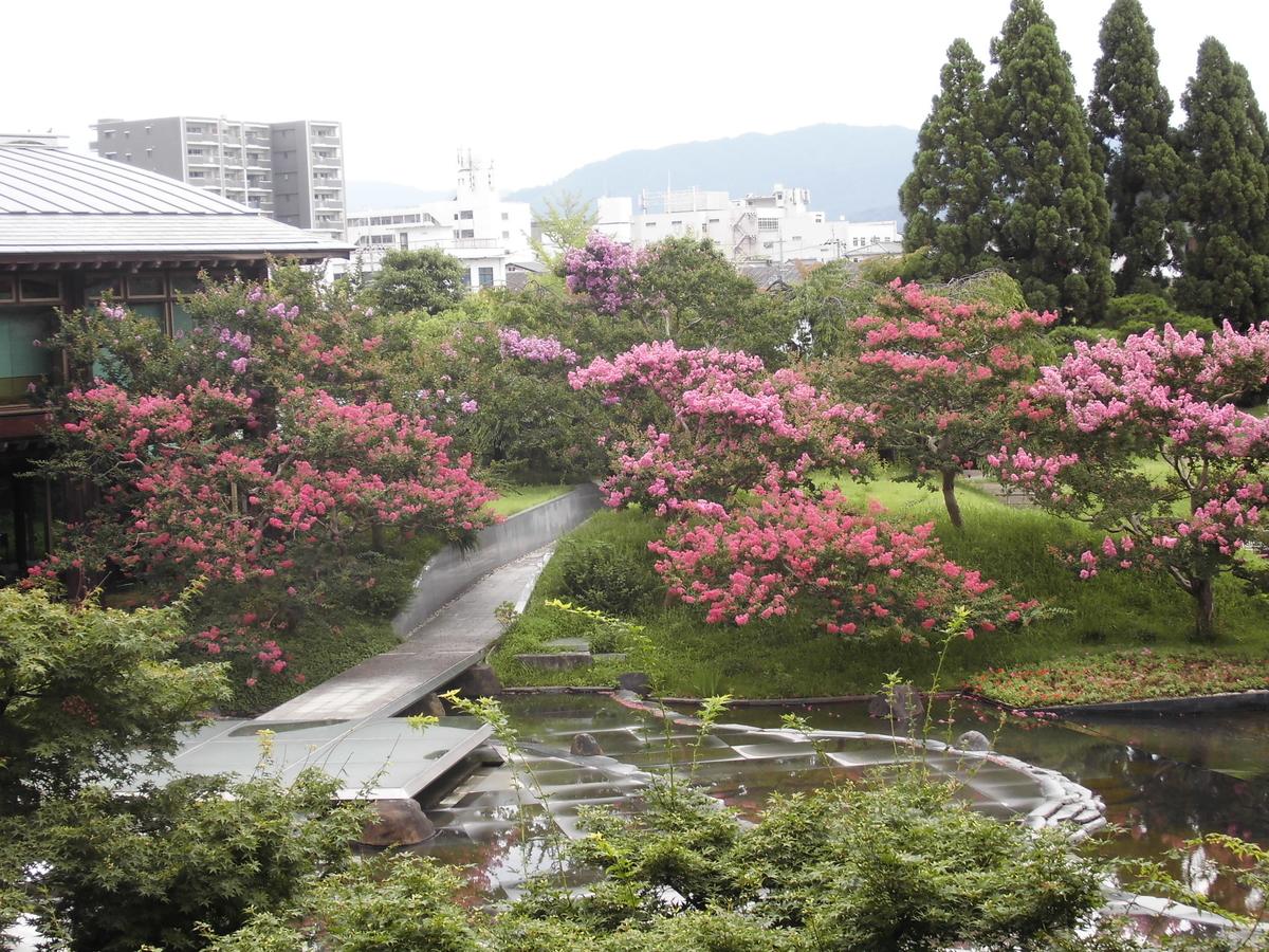 梅小路公園・朱雀の庭 サルスベリ 見頃 2016年7月18日 撮影:MKタクシー