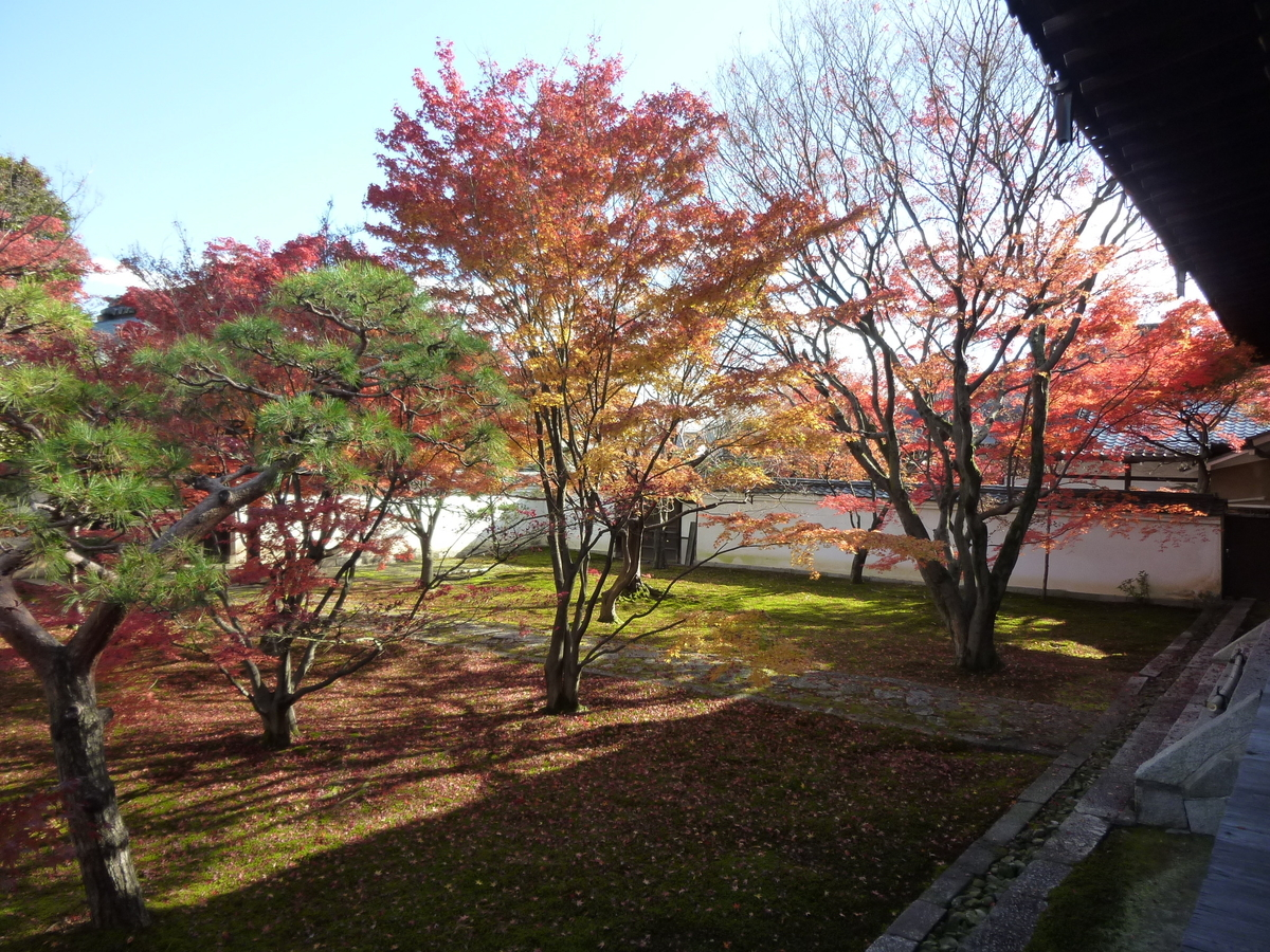 妙覚寺・法姿園 終わり近し 2007年12月8日 撮影:MKタクシー