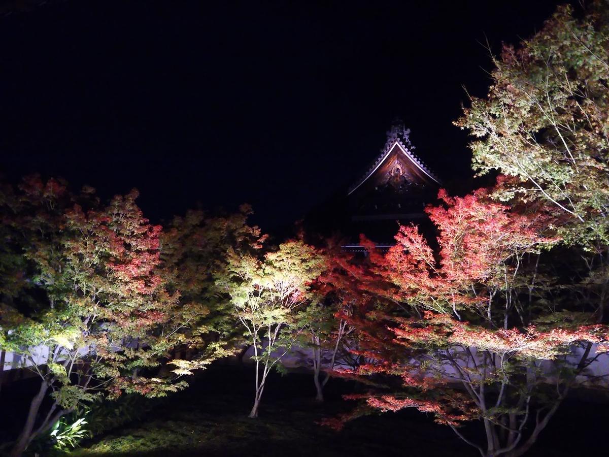妙覚寺・法姿園の紅葉ライトアップ 赤色づく 2017年11月11日 撮影:MKタクシー