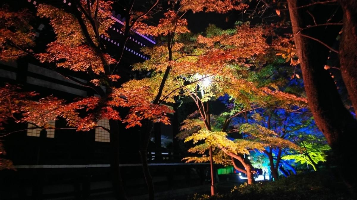 妙顕寺・本堂横の紅葉ライトアップ 見頃 2018年11月21日 撮影:MKタクシー